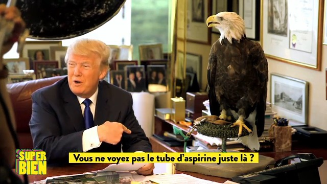 Donald Trump attaqué par un aigle en plein shooting photo !
