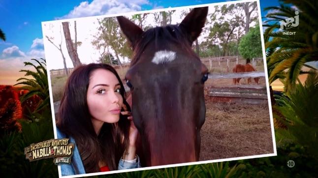 Un cheval attaque Nabilla !!!